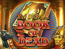 Book of Dead Slot.
