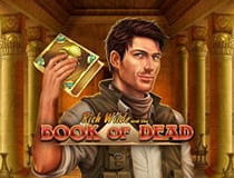 Der Slot Book of Dead.