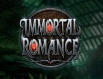 Der Slot Immortal Romance.
