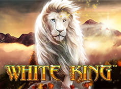 Der Playtech Slot White King