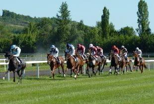 Pferderennen in einer Trabrennbahn.