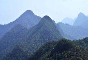 Einige kleinere Berge und Hügel im dichten Regenwald.
