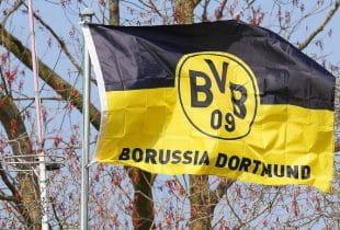 Flagge mit dem Vereinswappen des BVB.